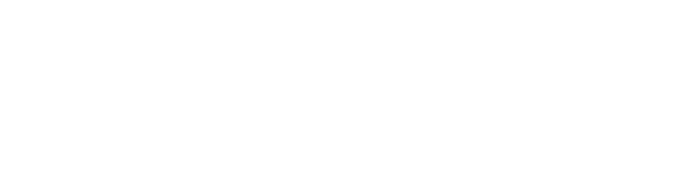 The Option Group logo